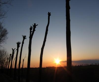 Piave Sonneuntergang in der Ebene